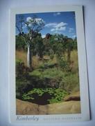 Australië Australia Western Australia The Kimberley Mirama National Park - Andere