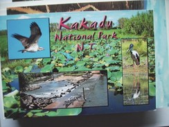 Australië Australia NT Kakadu National Park - Australië