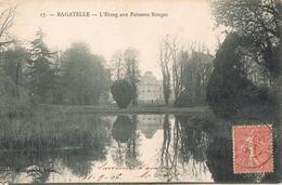23891. Postal BILLANCOURT (seine) 1906. BAGATELLE, Etang  Aux Poissons Rouges - Storia Postale