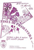 [MD0989] CPM - IN RILIEVO - COENZO DI SORBOLO (PARMA) - FESTA DI PRIMAVERA - NV 1994 - Parma