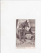 Chien Berger Allemand - Grande Guerre - La Kultur Boche Par Le Pain ... - Guerre 1914-18