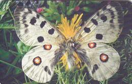Czech Rep. C306, Butterfly Parnassius Apollo, 2 Scans.   GEM1B (Not Symmetric White/Gold)