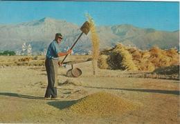 Crete - Lassithi Greece. Winnowing  # 05742 - Agriculture