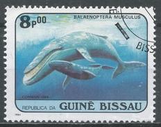 Guinea-Bissau 1984. Scott #598 (U) Balaenoptera Musculus, Whales, Baleine * - Guinée-Bissau