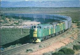 70532 TRAIN TREN TRIPLE GM'S RACE POPULAR GHAN PASSENGER US POSTAL POSTCARD - Eisenbahnen