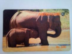 Sri Lanka 600 Rs Elephants Metrocard