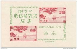 Japon Hb 22 Con Charnela - Blocks & Sheetlets