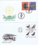 Norway;  2 FDC 1981;  Europa - CEPT And Birds - FDC