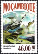 Mozambique 2013 - Extinct Animals - Labrador Duck - Uccelli