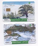 Cedars 2009 2 Used Phonecards Lebanon , Liban Telecarte  Libano