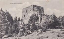 Ruine Wittighausen (162) * 19. 7. 1908 - Tschechische Republik