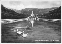 Cartolina Caserta Parco Reale Lo Specchio 1949 - Salerno