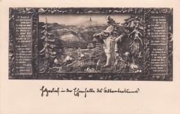 Holzrelief - Altvaterwarte - Altvatergebirge - República Checa