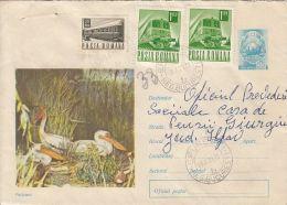 59056- PELICANS, BIRDS, COVER STATIONERY, 1971, ROMANIA