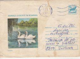 59060- SWAN, BIRDS, COVER STATIONERY, 1977, ROMANIA
