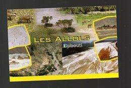 DJIBOUTI  Boars, Camels - Dschibuti