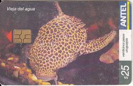 URUGUAY - Vieja Del Agua(408a), 08/05, Used