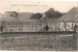 ---- 10 ---  VILLENAUXE  Chenil De M Henri Baillet - TB (timbre Décollé) - France