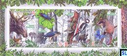 Belarus Stamps 2014, Naliboki Pushcha, Birds, MS - Belarus