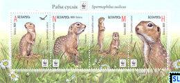 Belarus Stamps 2015, Speckled Ground Squirrel, MS - Belarus