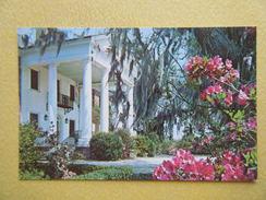 Le Hall De La Plantation Boone. - Charleston