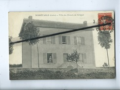 CPA -   Noirétable - Villa Des Bleuets Au Grippel - Noiretable