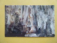 CARLSBAD. Le Parc National Des Grottes De Carlsbad. - Autres