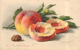 KLEIN Catharina (illustrateur) - Pêche Et Noix. - Klein, Catharina