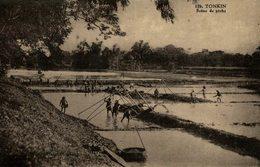 TONKIN SCENE DE PECHE - Vietnam
