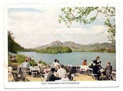 5480 REMAGEN, Blick Auf Die Insel Nonnenwerth Und Das Siebengebirge - Remagen