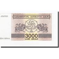 Géorgie, 3000 (Laris), 1993, KM:45, NEUF - Géorgie