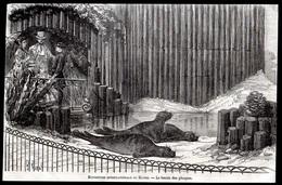 1868  --  76 NORMANDIE   --  EXPOSITION INTERNATIONALE DU HAVRE  LE BASSIN DES PHOQUES   3M.164 - Collections