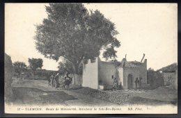 ALGERIE - TLEMCEN - ROUTE De MANSOURAH - Marabout De Sidi Ben Djema - Tlemcen