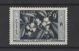NOUVELLE-CALEDONIE . YT 286 Neuf **  Le Café 1955 - Nouvelle-Calédonie