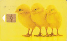 Czech Rep. C363, Easter I., Chickens, 2 Scans.