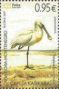 CG 2017-03 BIRDS SPOONBILL, CRNA GORA MONTENEGRO, 1 X 1v, MNH - Cigognes & échassiers