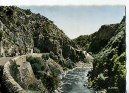 CP03293 - Les Gorges De La Sioule - Frankreich