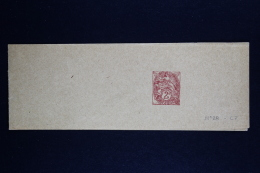 France  Bande Journal  Blanc   2 C. Type C7 - Enteros Postales