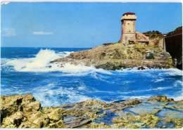 CALAFURIA  LIVORNO  Veduta Con Faro  Lighthouse  Phare - Livorno