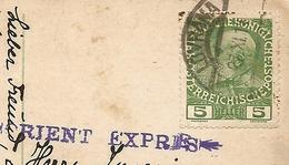 Timbro Dell' ORIENT EXPRES Su Cartolina Di ABBAZIA In CROAZIA - FORMATO PICCOLO - VIAGGIATA 1914 - (rif. E89) - Treni