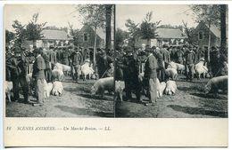 Carte Stéréoscopique LL - Scènes Animées - Un Marché Breton ( Aux Cochons Porcs Foule ) Dos Vert Non écrite Etat Neuf - Bretagne