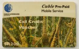 Palm Trees - Seychelles