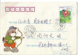 China Special Cover 1992 Seven-Spot Ladybird (Coccinella Septempunctata) Postal History Cover - 1949 - ... République Populaire