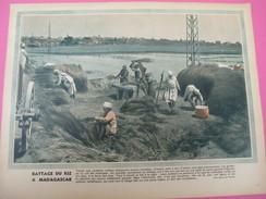 Grde Image Pédagogique/31 X 24 Cm/France D'Outremer/Battage Du Riz à Madagascar /G Lang/Vers 1950  GRAV198 - Vecchi Documenti