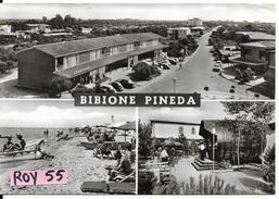 Veneto-venezia-bibione Pineda Vedute Supermarket Combishop Spiaggia Animata Bar Botte Di Vino Anni 50/60 - Italia