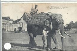 ASIE - CAMBODGE - Pnom Penh - Elephant Préféré Du Roi