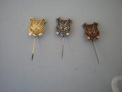 Hunting  20 Godina Zelen Dvor 3 Pieces - Pin