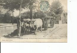 58-DORNES LE CHAR DE L AGRICULTURE - France