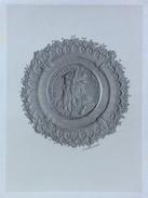 LEONARDO DA VINCI   STAMPA DELL'800 CON VELINA NOMINATIVA  (225x 155)     -  COME DA FOTO - Historische Dokumente