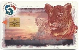 South Africa - Telkom - Kruger National Park - Leopard - 1999, Used